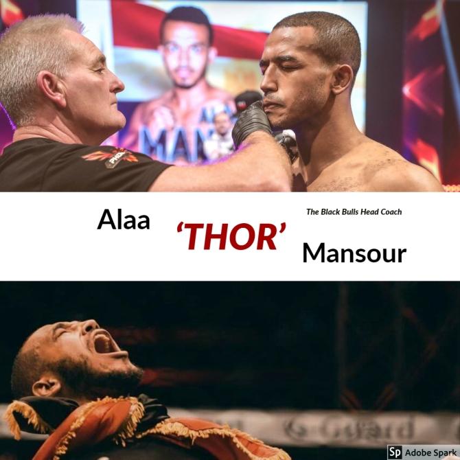 AlaaMansour